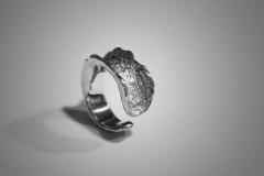 anillo corteza plata