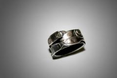anillo tornilols